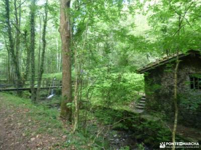 Parque Natural Pagoeta_Valle Leitzaran;parque nacional peneda geres rutas mirador del sueve ruinas c